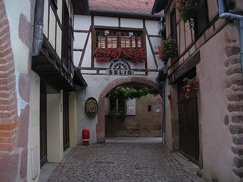 Point de vente de vin d'Alsace - Domaine Selig